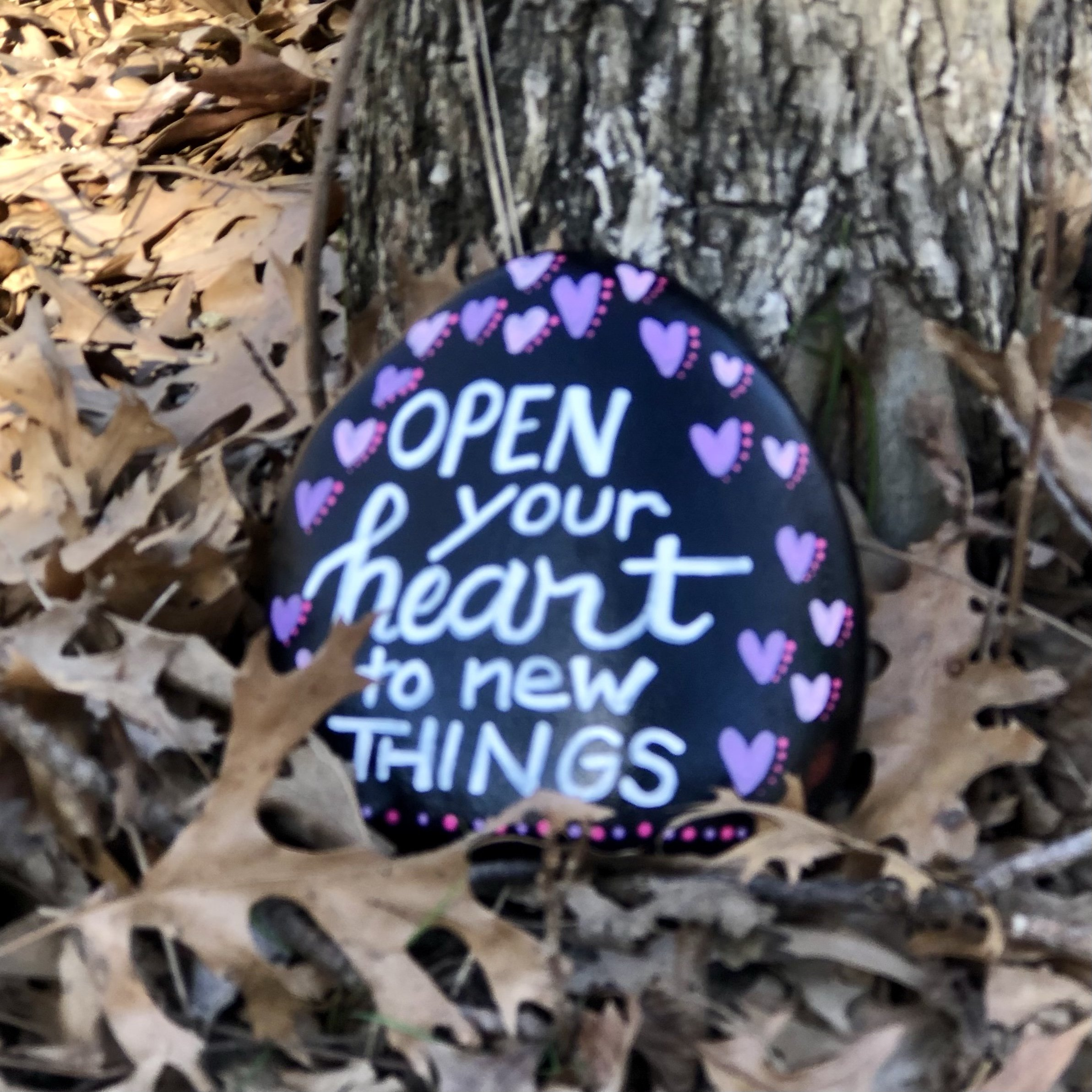 Open Your Heart to new things painted rock